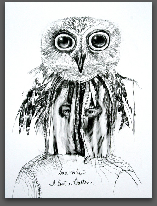 Saw-Whet Owl And The Lost Button